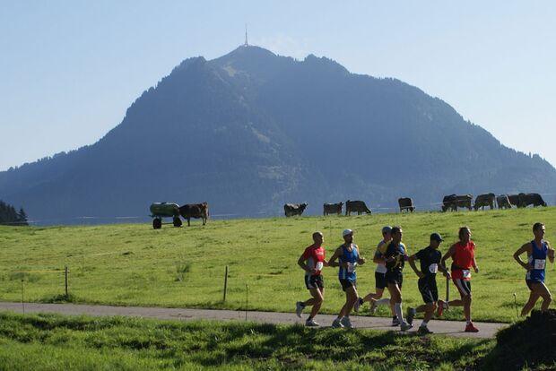 OD 2011 Ultratrail Allgaeu Panorama-Marathon Gruenten