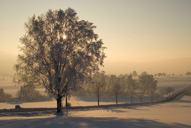 OD-2012-Keen-Winterbilder-Juergen-Mayer (jpg)