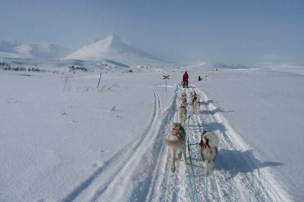 OD-2012-Keen-Winterbilder-Katja-Stoehr (jpg)