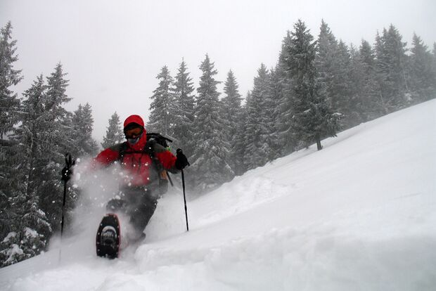 OD-2012-Keen-Winterbilder-Pitt-Niehusmann (jpg)