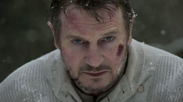 OD-2012-The-Grey-Kinofilm-Szenenbild-01 (jpg)