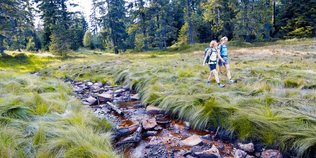 OD 2013 Weitwanderwege Wandern Deutschland Harz