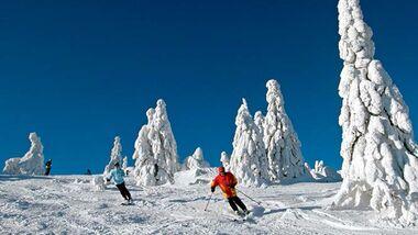 OD-2014-Bayern-Winter-Special-Bayrischer-Wald-aufmacher ski