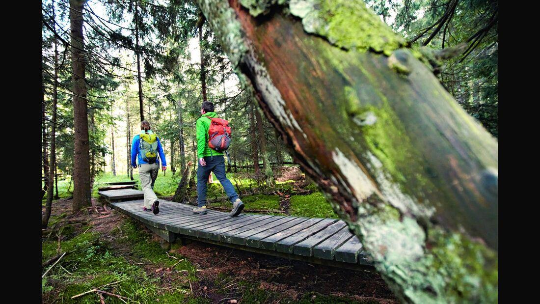 OD 2014 Harzer Hexen Stieg Brocken