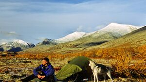 OD-2014-Norwegen-orwegen-trekking-Man-and-dog_AndersGjengedal,visitnorway.com.jpg