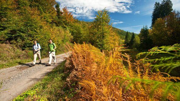 OD 2014 Pfaelzer Waldpfad Fernwanderweg