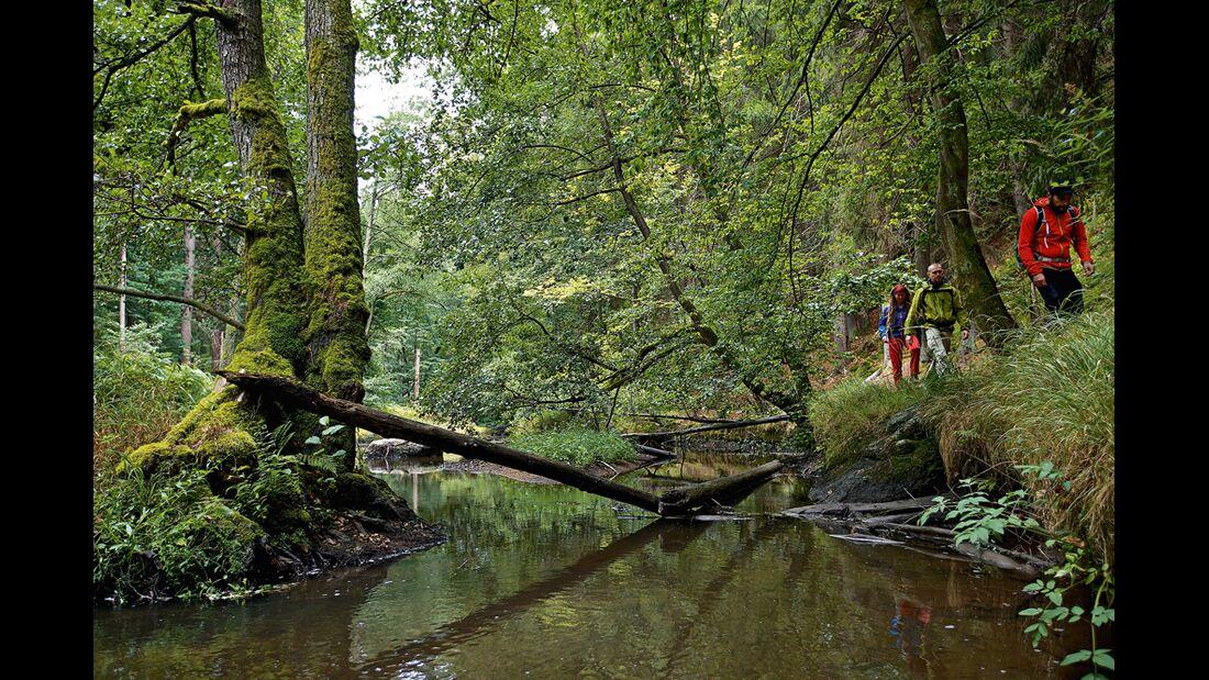 OD 2015 Bayern Naturgenuss Zoigl Bierwandern Oberpfalz Windischeschenbach