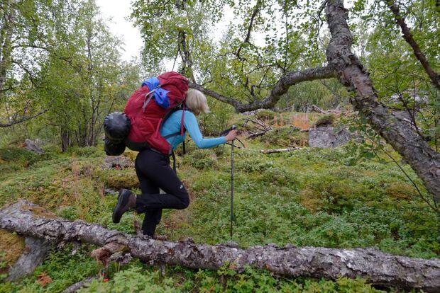 OD 2015 Sarek Schweden Wildnis Gnielka 2