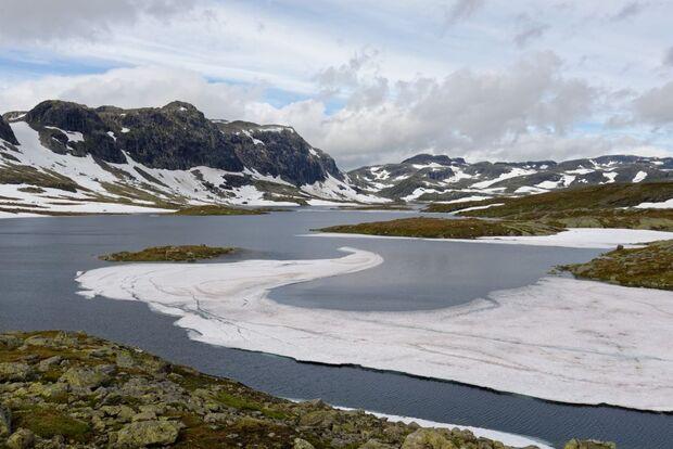 OD 2016 Hardangervidda Norwegen Boris Gnielka Kathleen Richter Trekking Hund Zelten Wildnis 4
