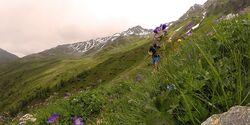 OD 2016 Trailrunning Großglockner Ultra Trail