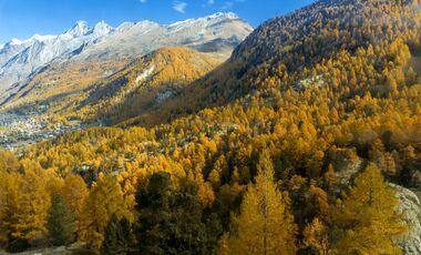 OD 2017 Herbst Alpen Berge Wallis Colourbox