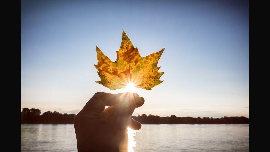 OD 2017 Herbst pixabay