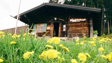OD 2018 Hündeleskopfhütte Allgäu Pfronten vegetarische berghütte