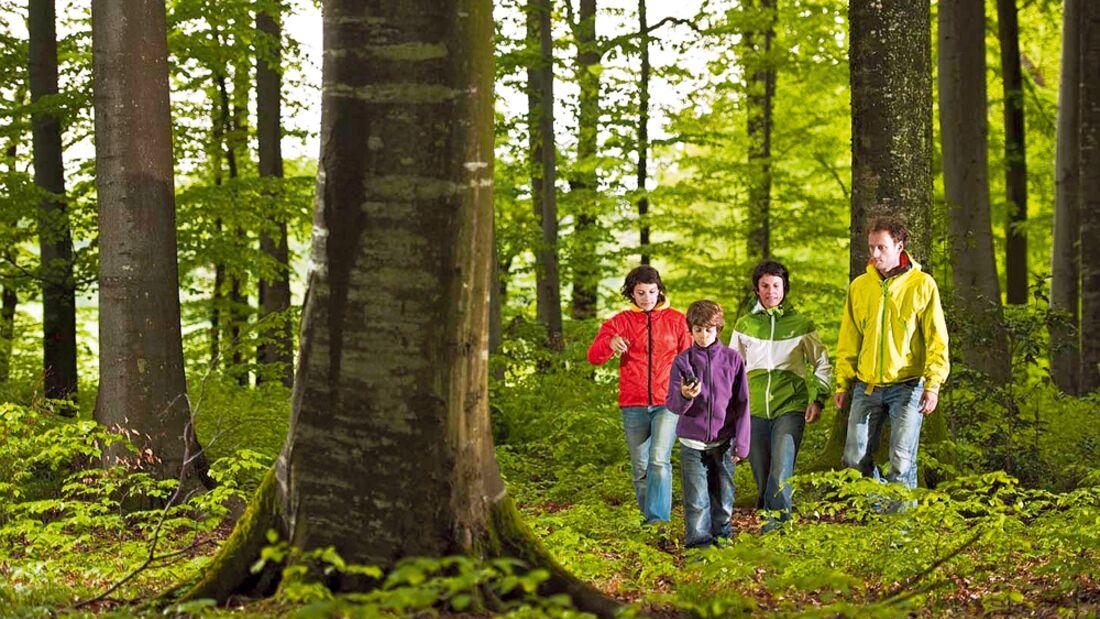 OD Abenteuer Geocaching: GPS-Schatzsuche im Wald