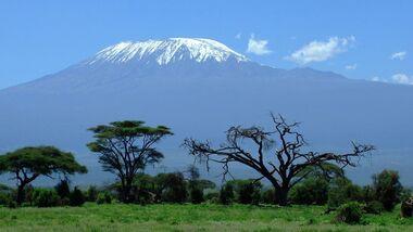 OD Afrika Kilimanjaro Aufmacher