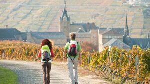 OD Ahrsteig Wandern Rheinland-Pfalz 2011