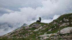 OD Alpencross per pedes Wandern Nebelhorn Bergpanorama Landschaft