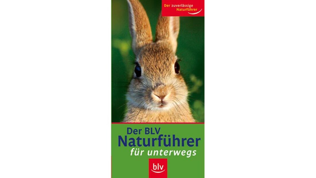 OD Bücher BLV-Naturführer für unterwegs