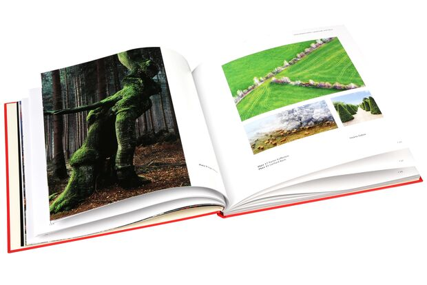 OD CEWE Fotobuch Fotowettbewerb 2013