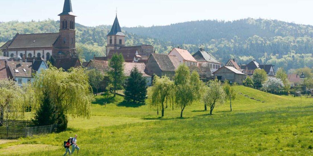 OD Die besten Frühjahrs-Ziele: Elsass