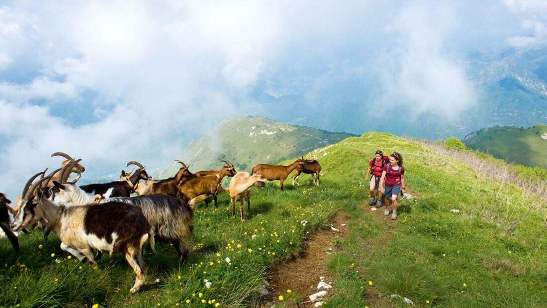 OD Die besten Frühjahrs-Ziele: Trentino