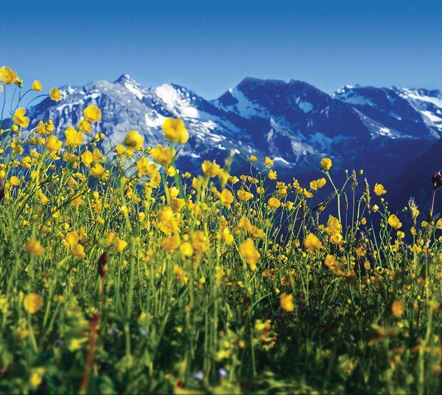 OD Exklusiv-Reise: durch das Zillertal nach Innsbruck