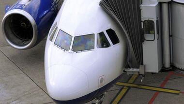 OD Flugzeug Gepäck Flughafen pixelio