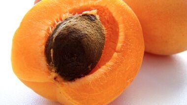OD Gutes aus der Natur: Früchte und Nüsse - Aprikose