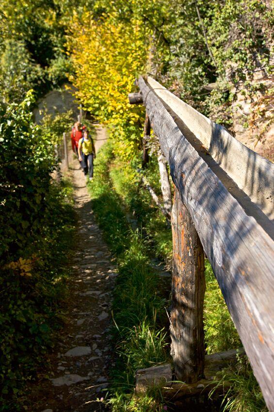 OD Herbstwandern im Vinschgau