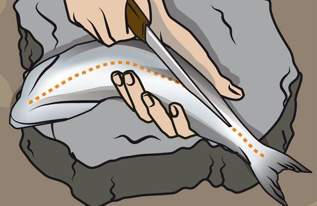 OD Instructor 2010 Fischzubereitung 1 (jpg)