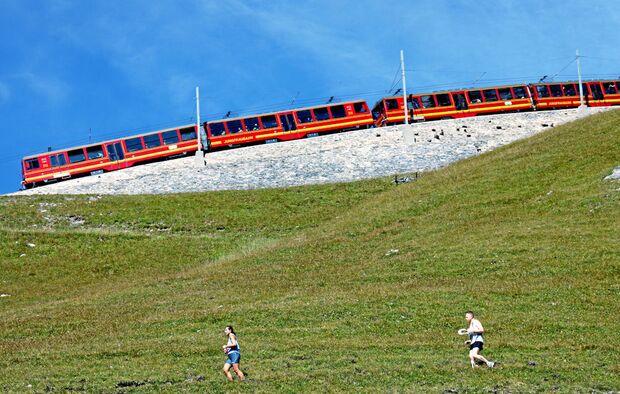OD Jungfrau Marathon 2010