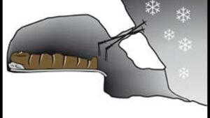 OD Kältestest: Schneehöhlenbau leicht gemacht