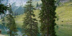 OD Karwendelwanderung Soiernseen