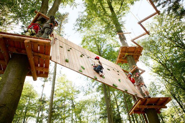 OD Klettersteig im Wald: Hochseilgarten