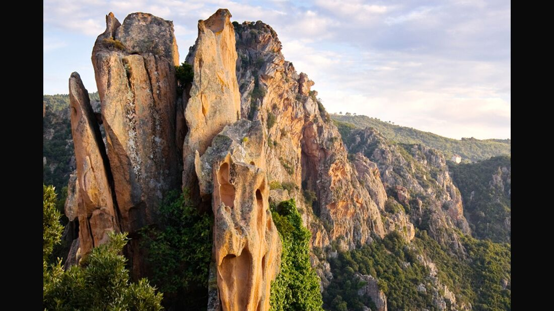 OD-Korsika-0313-ForestOfPiana_Sansfairedebruit_Dreamstime (jpg)