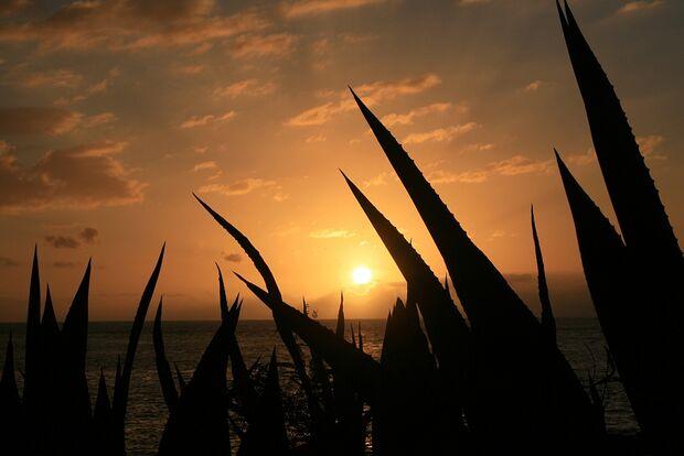 OD La Reunion Insel Tropen Meer