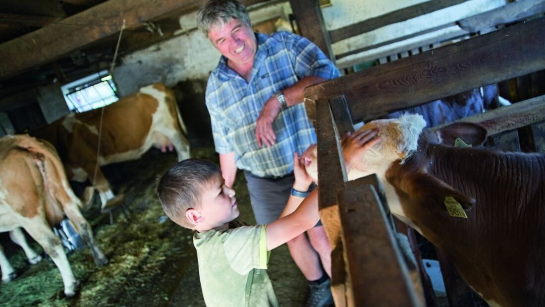 OD Landeskunde: Die Almwirtschaft in Tirol