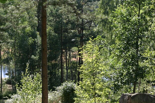 OD-Naturzeltplatz-Schweden-Haetteboda (JPG)