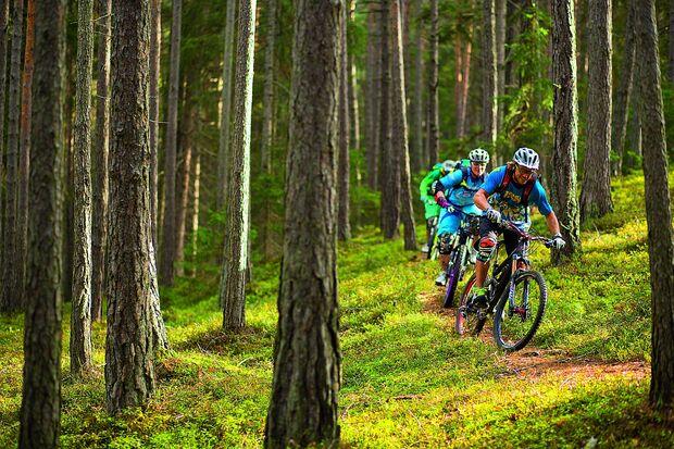 OD-SH-Bayern-2015-Bikeguide-Bayrischer-Wald