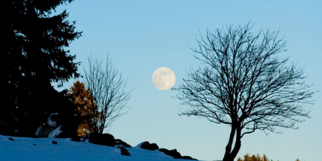 OD-Schwarzw-Mond (gif)