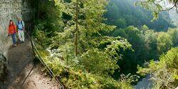 OD Schwarzwaldweg
