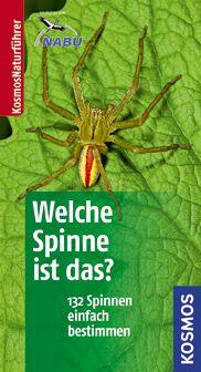 OD Spinnenführer