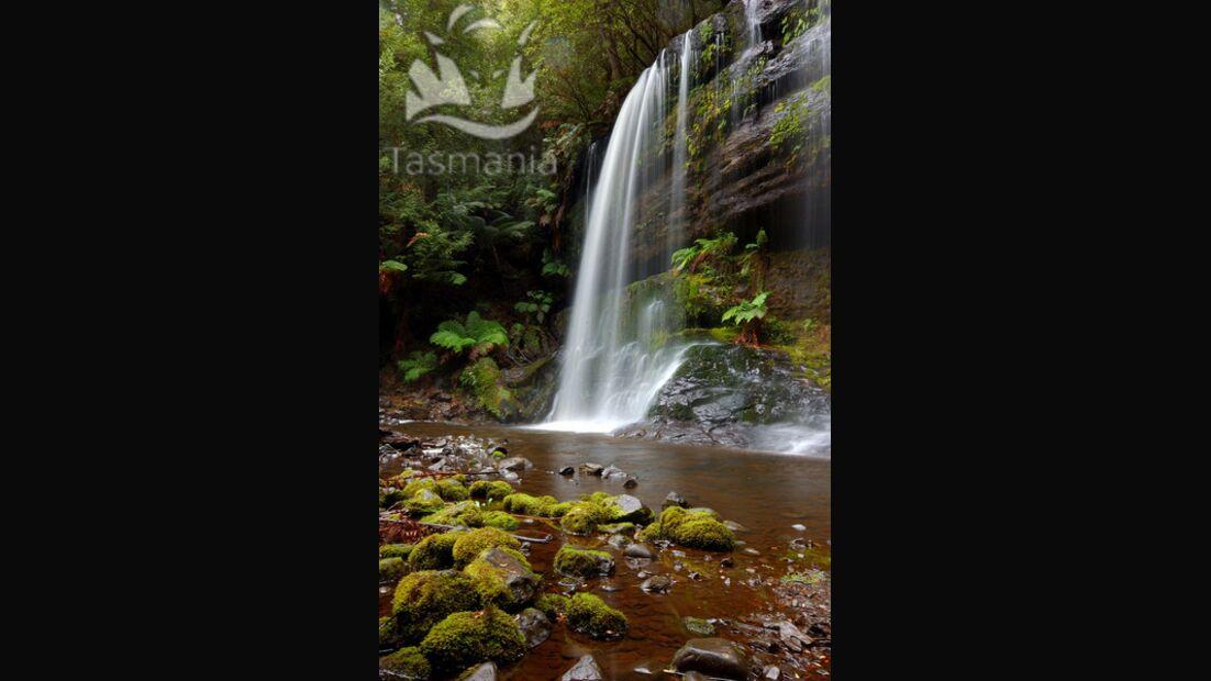 OD Tasmanien Wasserfall