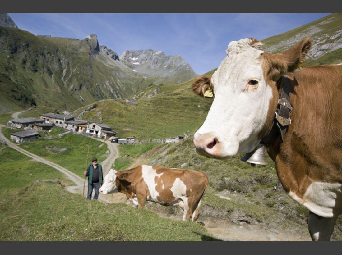 OD-Tirol-Bergsommer-Osttirol-5 (jpg)
