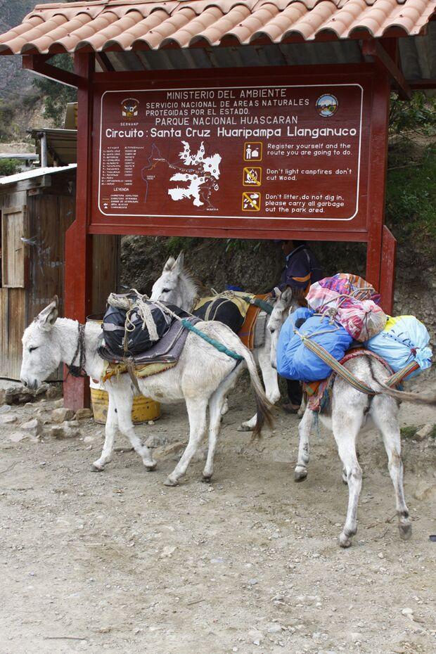 OD Touren 2011 Alpamayo Peru Roegner_SantaCruz_MG_7581 (jpg)
