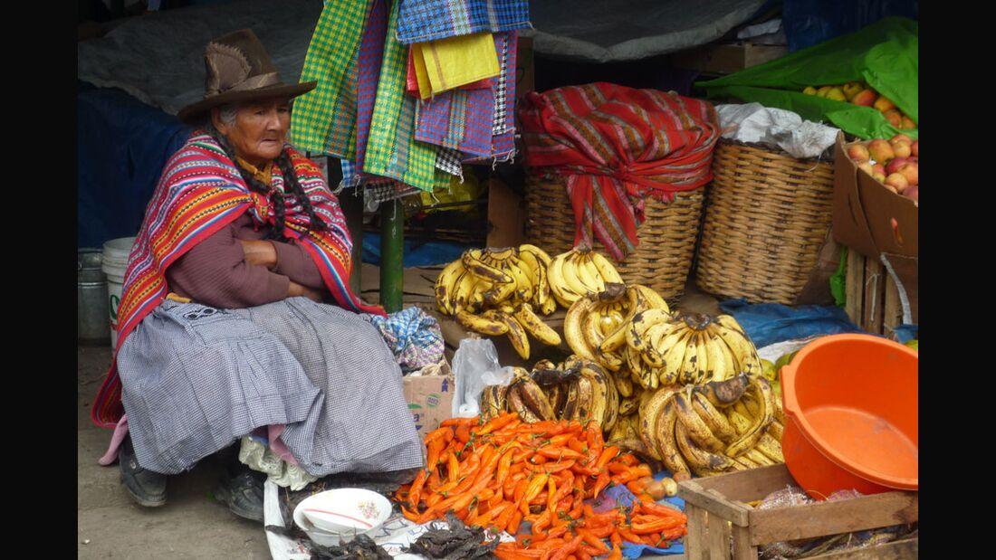 OD Touren 2011 Alpamayo Peru Roegner_SantaCruzP1100012 (jpg)