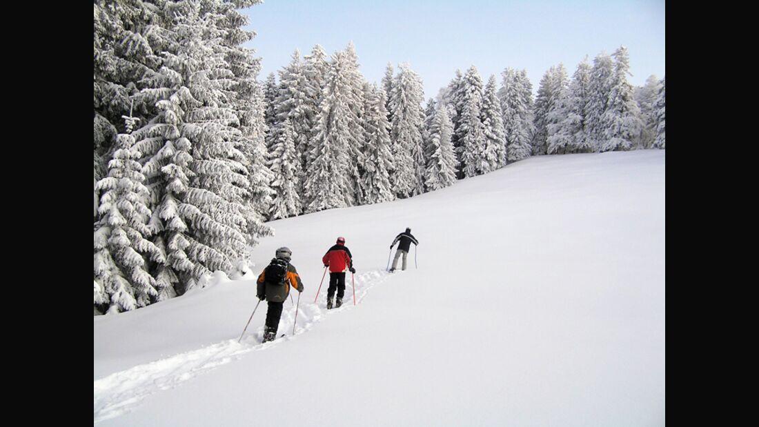 OD Tourengehen im Winter