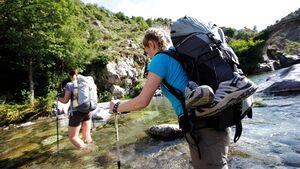 OD Trekkingstöcke Leki