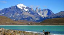 OD-Weltr-Chile_Sd_TorresdelPaine (jpg)