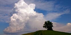 OD Wetterzeichen deuten